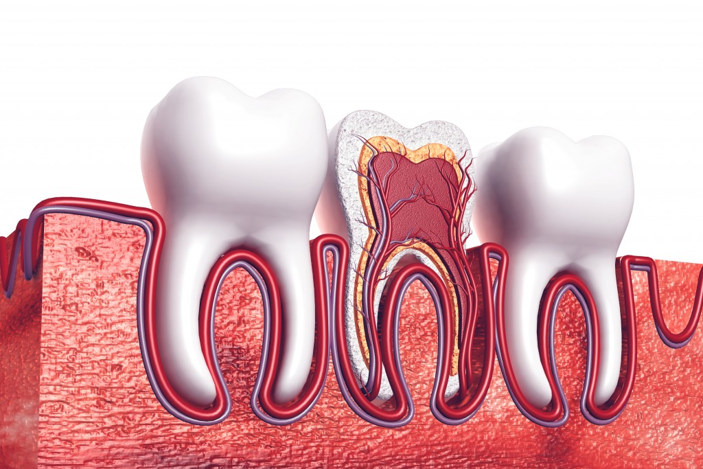 Root Canals: Questions For Your Endodontist