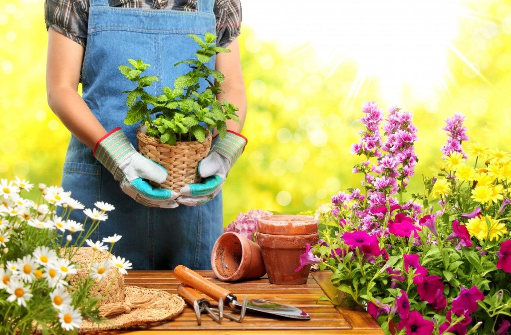 DIY landscapping