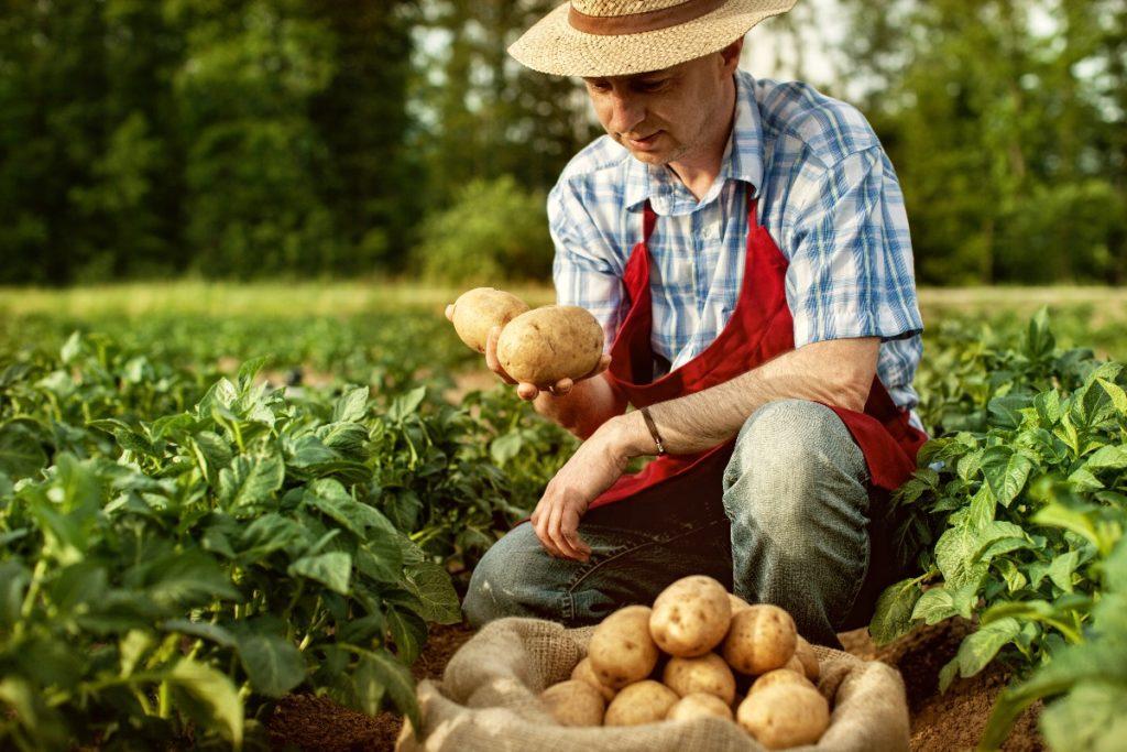 man on a farm